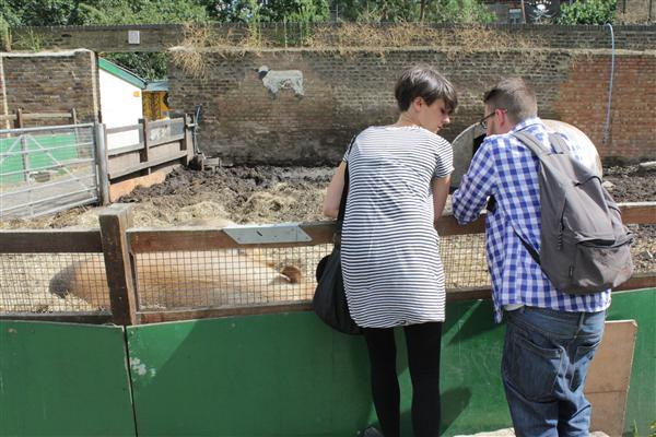 Urban Londoner's enjoy a stroll through the Hackney farm to see where food comes from, or just look at pigs.